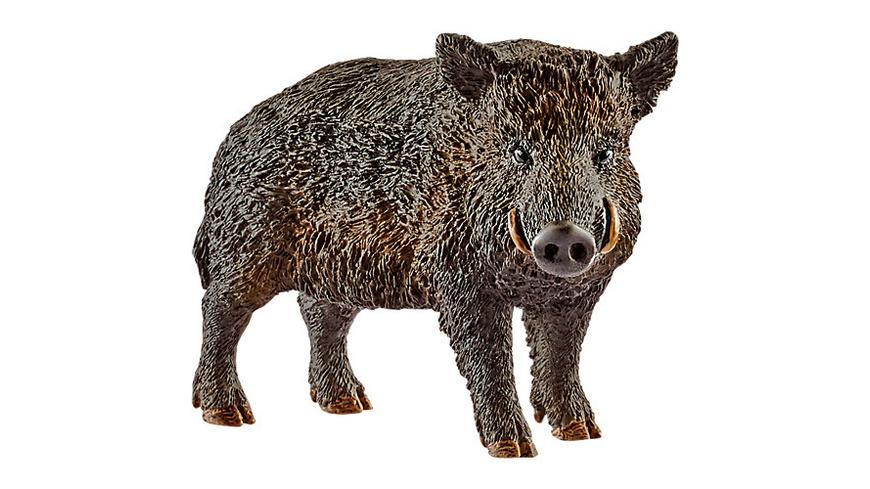 Schleich 14783 Wild Life: Wildschwein